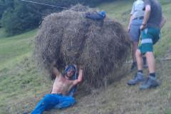MEIERSALP HEUET 2012